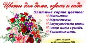 Визитка цветы 1